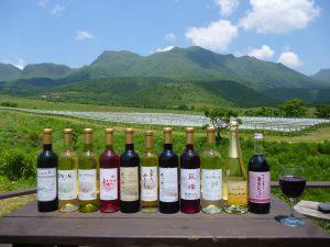 久住山と久住ワイナリーのワインの写真