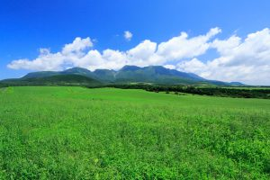 久住高原の写真