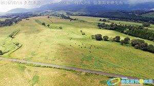 絶景の久住高原 ドローンで空撮4K写真 20160714 vol.4を公開Aerial in drone the Kuju kogen /Kuju Plateau. 4K Photography