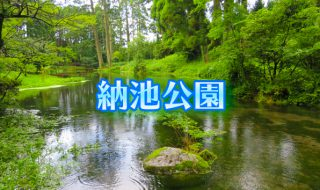納池公園 日本の銘水 秘境の湧き水