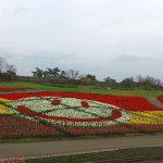 笑顔のチューリップ くじゅう花公園 チューリップフェスティバル