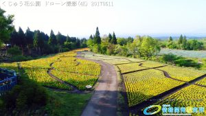 くじゅう花公園 四季彩の丘 空撮(4K) Vol.1