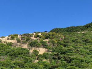 牧の戸展望台(沓掛山)